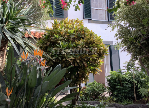 Ref 1802b, 6 bedrooms manor with panoramic view, close to the heart of the city, for sale, Santa Luzia, Funchal